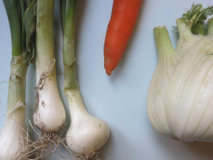 Odori: onions, carrot, fennel