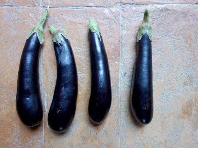 Eggplant Caprese Elizabeth Minchilli In Rome1