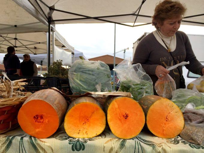 Pumpkin_and_Beans_Elizabeth_MInchilli