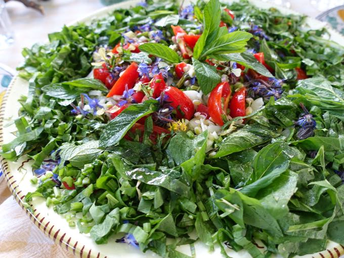 Chicory and Flower Salad