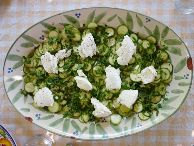 Zucchini, Elizabeth MInchilli